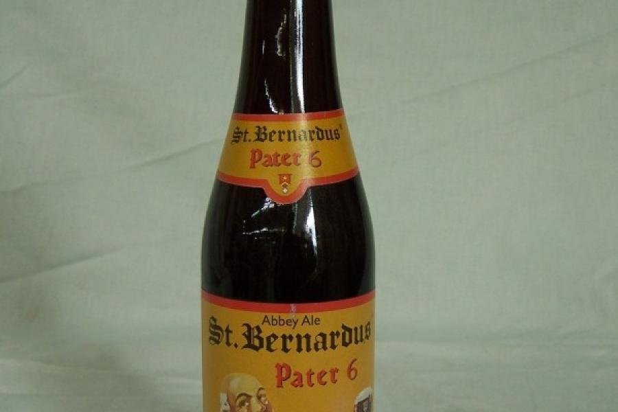 Saint Bernardus 6